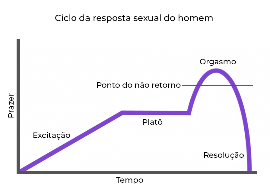 ciclo da resposta sexual masculina